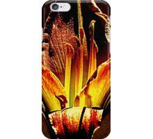 Wondrous Hocuspocus iPhone Case/Skin
