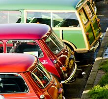 Minis by photomadly