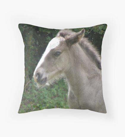 grey foal Throw Pillow