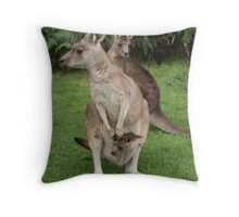 Had about a pouch full... Throw Pillow