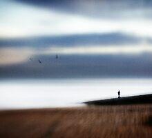 Sea of silver light by Steve Barnes