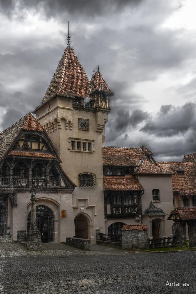 Peles Castle 2, Sinaia, Romania by Antanas