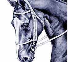 Sport Horse by Patricia Howitt