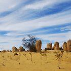 Pinnacles Desert, Cervantes W.A. - gcdepiazzi by gcdepiazzi