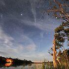 Moonlit River by Wayne England