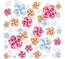 Beautiful Colourful Carnations Photographic Print