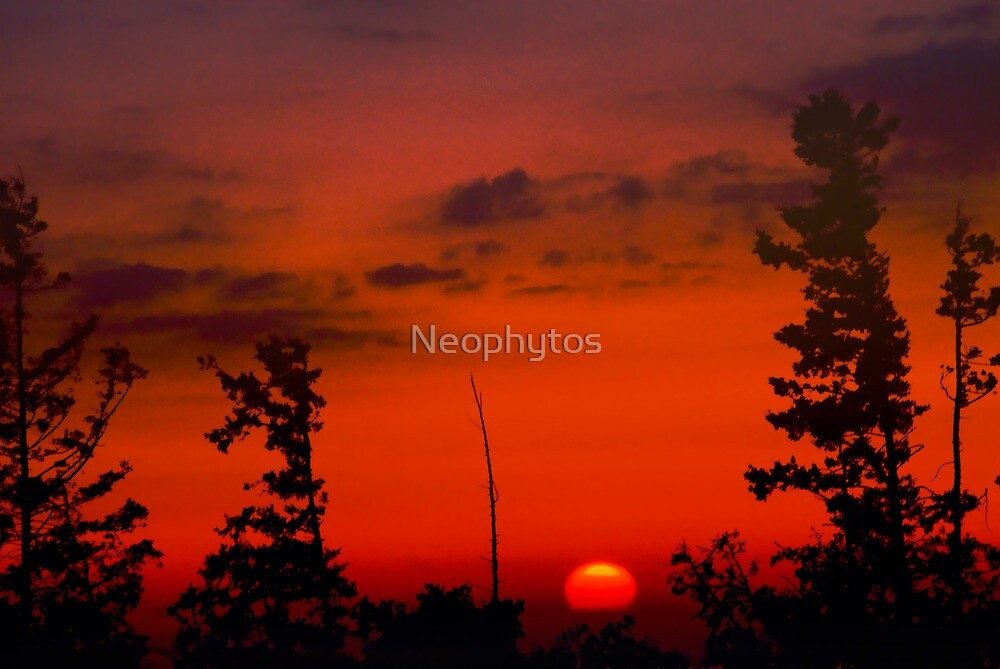 Love Cyprus - 2 - by Neophytos