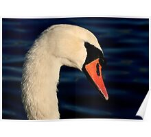 The Mute Swan Poster