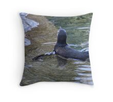 I Win ... but I have to stay in the shallow waters. Throw Pillow