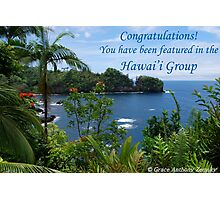 Hawai'i Group Feature Banner Photographic Print