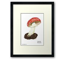 Fly Agaric (Amanita Muscaria) Framed Print