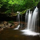 Oneida Falls - June 2010 by Lori Deiter