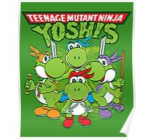 Teenage Mutant Ninja Yoshis Poster
