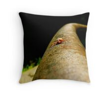 Head to Head with Spidell Throw Pillow