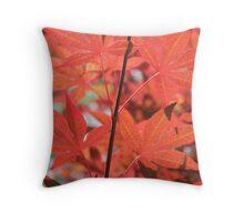 Sunlight Maple Throw Pillow