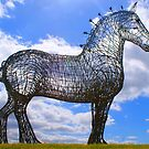 the working horse by Alan Findlater