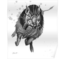 Charging Boar Poster