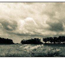 Storm Clouds Over A Meadow With Trees  Bucyrus Ohio by MLabuda
