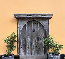 Orange door by LooseImages