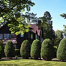 Conrad Mansion by rocamiadesign