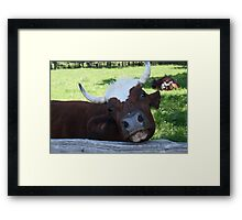 Ain't I jest the cutest thang? By Colin Harper (12) Framed Print