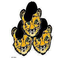 OG Cheetah Photographic Print