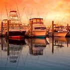 Fishing boats by bettywiley