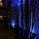 Artistic Lighting by Len Bomba