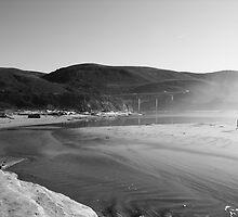 Pescadero Beach B/W by condyak