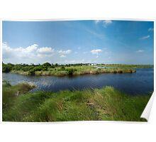 Louisiana's delicate wetlands Poster