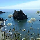 Pacific Splendor by Betty Burnitt
