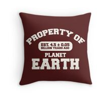 Property of Earth (Classic Light) Throw Pillow