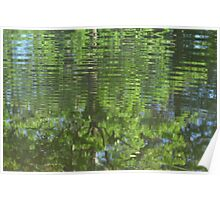 Rippled tree reflection Poster