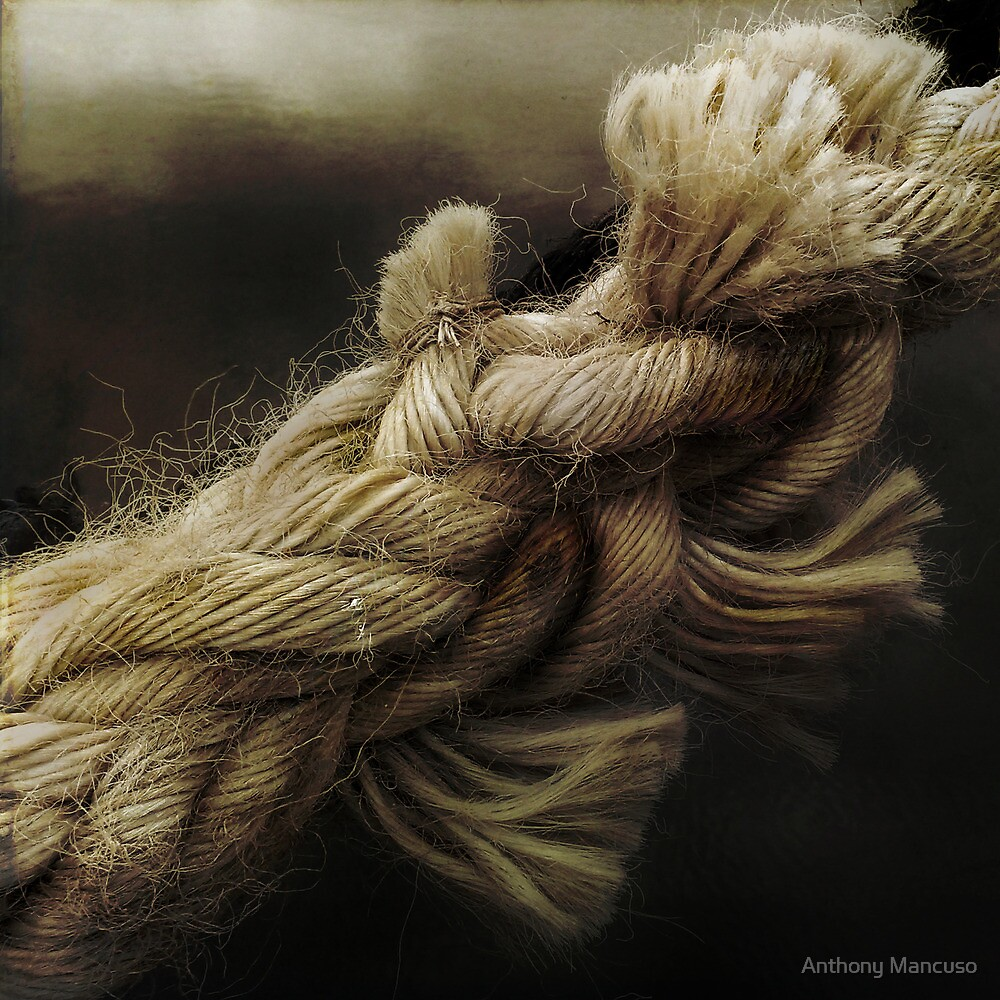 entwined by Anthony Mancuso