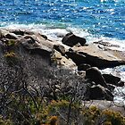 Beached - gcdepiazzi by gcdepiazzi