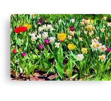 Spring colours - painted Canvas Print