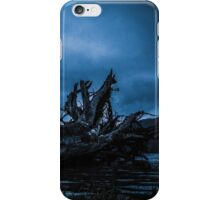 Night Fell iPhone Case/Skin
