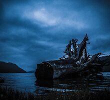 Night Fell by Lee Harvey
