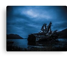 Night Fell Canvas Print