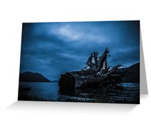 Night Fell Greeting Card