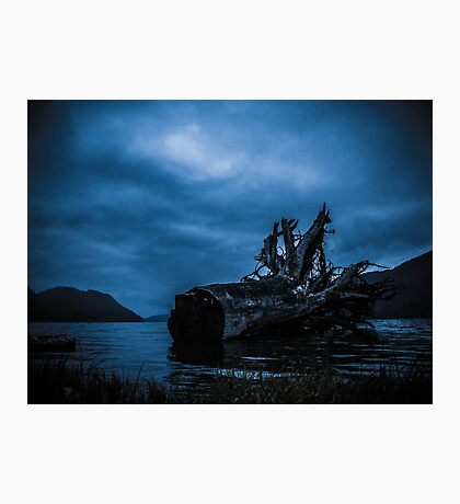 Night Fell Photographic Print