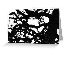 tree in shadow Greeting Card