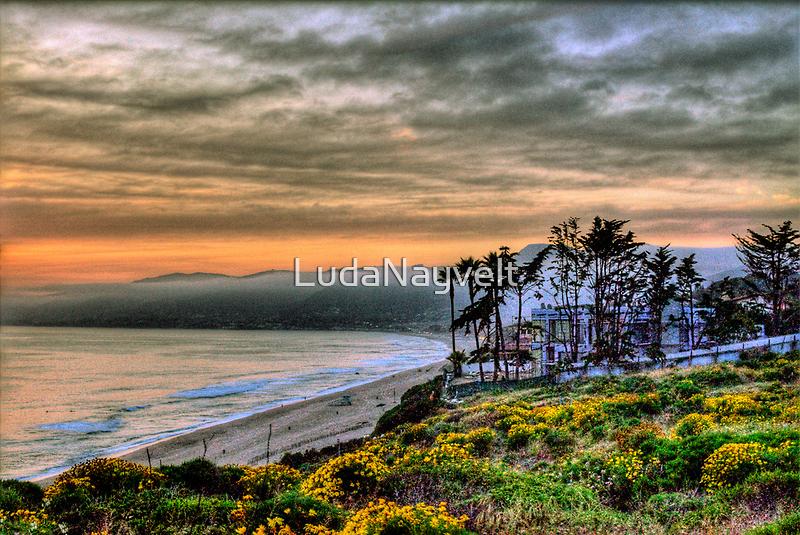 See you in California by LudaNayvelt