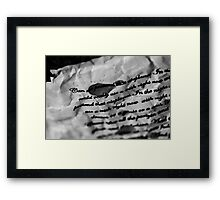 Lyrics - Airplanes, B.O.B ft Hayley Williams and Eminem Framed Print