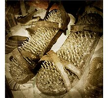 3463 Shoes by AnkhaDesh