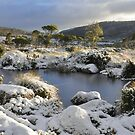Snow at Mt Field by Morag Anderson