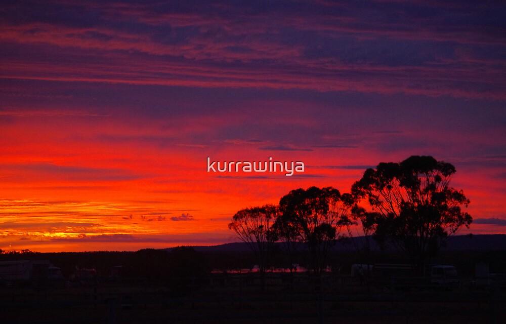 Little Topar Sunrise by Penny Kittel