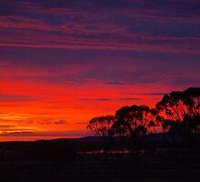 Little Topar Sunrise by kurrawinya