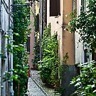 Alley Gardens in Anagni Italy. by Warren. A. Williams