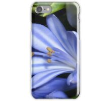 Blue and White Agapanthus iPhone Case/Skin